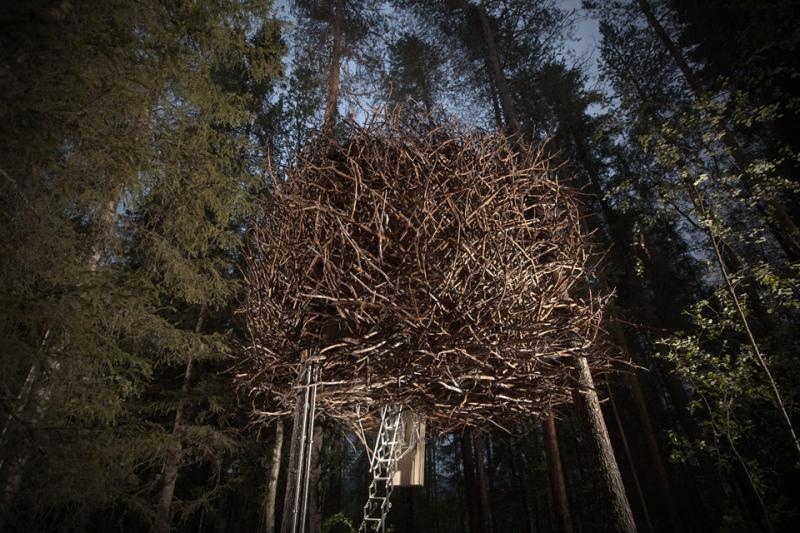Bird's Nest Suède_Parka_architecture_design